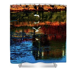 Beautiful II Shower Curtain