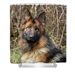 Shower Curtain featuring the photograph Beautiful Jessy by Sandy Keeton