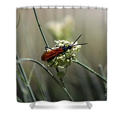 Beautiful Little Nightmare Shower Curtain