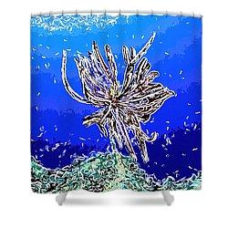 Beautiful Marine Plants 1 Shower Curtain by Lanjee Chee