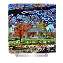 Shower Curtain featuring the painting Beautiful Moments On The Waltham Common by Rita Brown