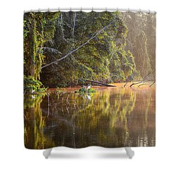 Beautiful Morning On A Lake Shower Curtain