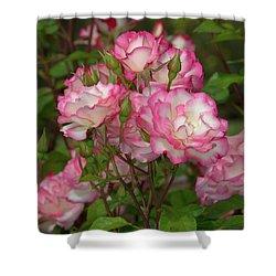 Beautiful Nicole Roses Lighter Shower Curtain