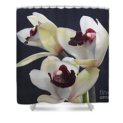 Beautiful Orchids Shower Curtain by Scott Cameron