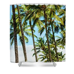 Shower Curtain featuring the photograph Beautiful Palms Of Maui 16 by Micah May