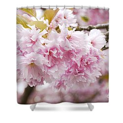 Beautiful Pink Blossoms Shower Curtain