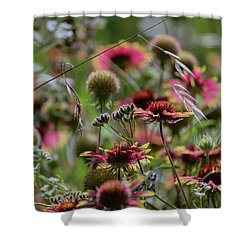 Beautiful Purple And Yellow Wildflowers Shower Curtain