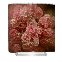 Beautiful Roses 2016 No. 3 Shower Curtain by Richard Cummings