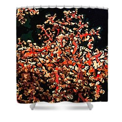 Beautiful Soft Coral 3 Shower Curtain by Lanjee Chee