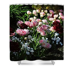Beautiful Spring Flowers Shower Curtain by Louise Heusinkveld