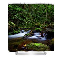 Beautiful Stream In Tremont Smoky Mountains Tennessee Shower Curtain