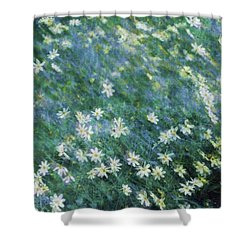 Beautiful Summer Blues Shower Curtain