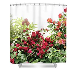 Shower Curtain featuring the photograph Beautiful Tangled Hedge by Cindy Garber Iverson