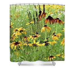 Beautiful The Way It Is Shower Curtain by Colleen Williams
