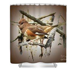 Beautiful Towhee Shower Curtain by Anita Oakley