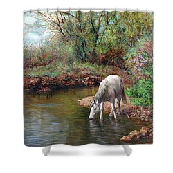 Beautiful White Horse And Enchanting Spring Shower Curtain