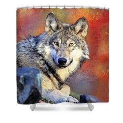 Beautiful Wolf Art Shower Curtain