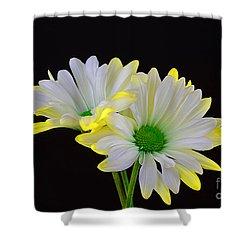 Beautiful Wonder Shower Curtain by Ray Shrewsberry