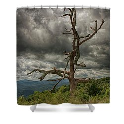 Beautifully Dead Shower Curtain