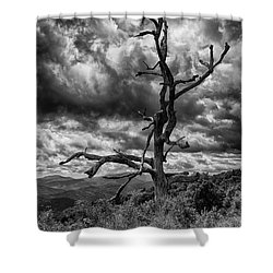 Beautifully Dead In Black And White Shower Curtain