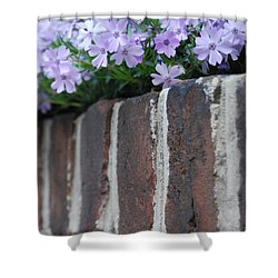 Beauty And Bricks Shower Curtain