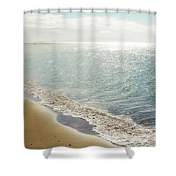 Shower Curtain featuring the photograph Beauty And The Beach by Sharon Mau