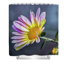 Beauty And The Beasts Shower Curtain