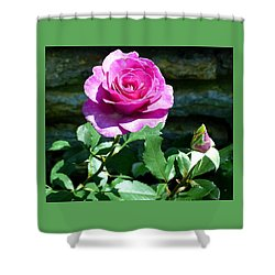 Shower Curtain featuring the photograph Beauty And The Bud by Will Borden