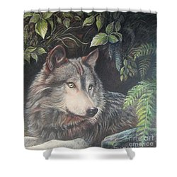 Beauty Boy Shower Curtain