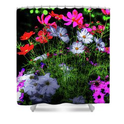 Shower Curtain featuring the photograph Beauty II by Tom Prendergast