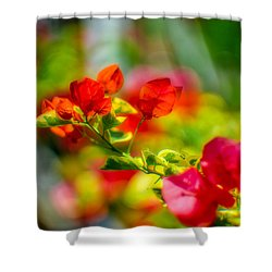 Beauty In A Blur Shower Curtain