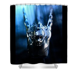 Beauty In Black And Blue Shower Curtain by David Lee Thompson