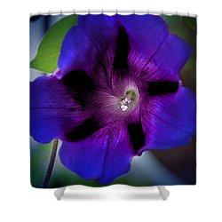 Beauty In Blue Shower Curtain