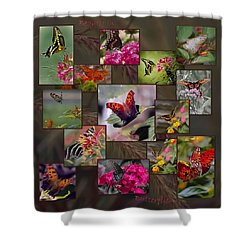 Beauty In Butterflies Shower Curtain