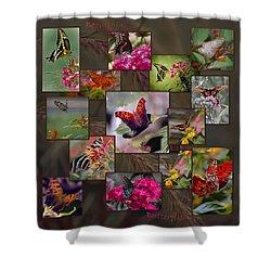 Beauty In Butterflies Shower Curtain