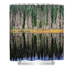 Beauty In Idaho Bog Shower Curtain