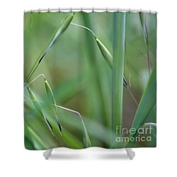 Beauty In Simplicity Shower Curtain by Sheila Ping