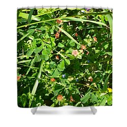 Beauty In The Details Shower Curtain
