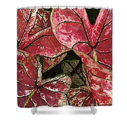 Beauty In The Eye Of The Beholder Shower Curtain by Susan Crossman Buscho