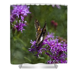 Beauty In The Garden Shower Curtain