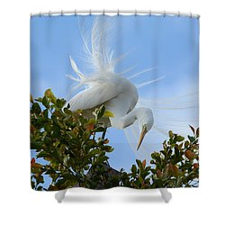 Shower Curtain featuring the photograph Beauty In The Treetop by Fraida Gutovich