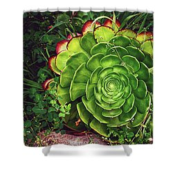 Beauty In The Weeds Shower Curtain