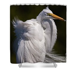 Beauty In The Wind Shower Curtain