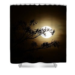 Beauty Is Life Shower Curtain