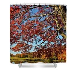 Shower Curtain featuring the photograph Beauty Of Fall by Karol Livote