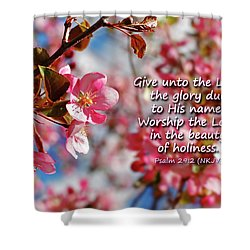 Beauty Of Holiness Shower Curtain by Lincoln Rogers