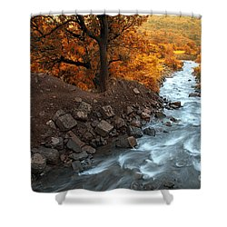 Beauty Of The Nature Shower Curtain by Charuhas Images