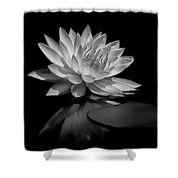 Beauty Of The Pond Shower Curtain