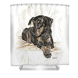 Beauty Pose - Doberman Pinscher Dog With Natural Ears Shower Curtain