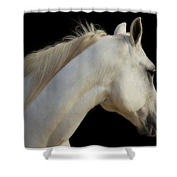 Shower Curtain featuring the photograph Beauty by Sharon Jones